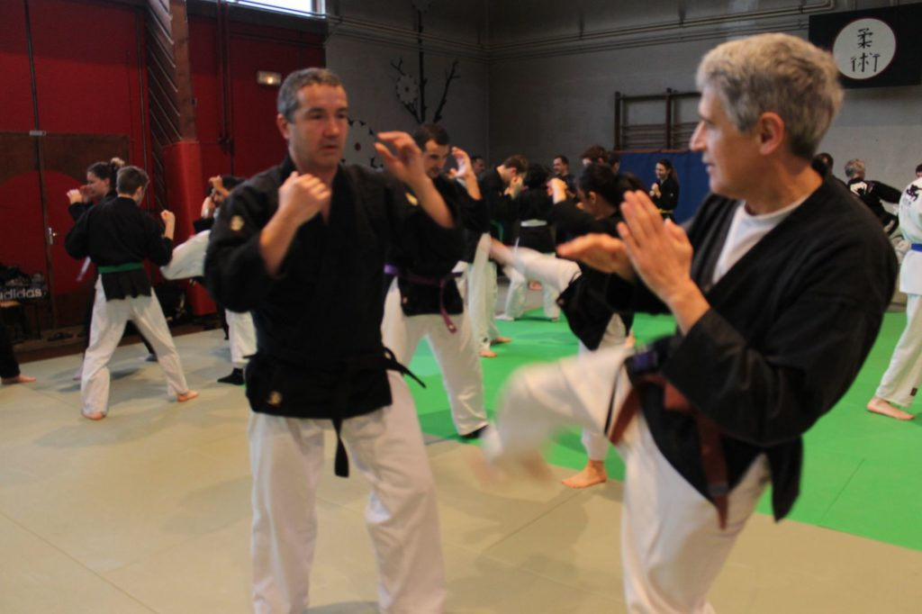 Cours Kempo Adultes