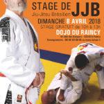 Dimanche 8 avril 2018, stage de Jiujitsu Brésilien animé par Maître Behring